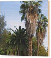 Lush Palms Wood Print