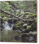 Lush Stream And Canopy Foliage Wood Print