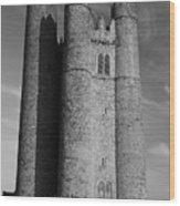 Lusk Round Tower B And W Wood Print