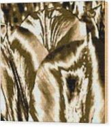 Lustrous Golden Tulip Wood Print