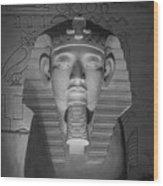Luxor Interior 2 B W Wood Print