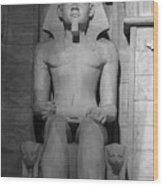 Luxor Interior 3 B W Wood Print