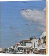 Luxury Beach Houses Malibu Wood Print