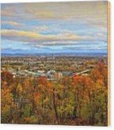 Lv Autumn Wood Print