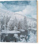 Lyman Run State Park 0376ir Wood Print