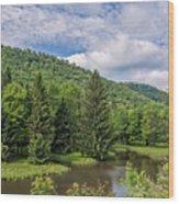 Lyman Run State Park Wood Print