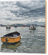 Lyme Regis Harbour - March Wood Print