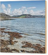 Lyme Regis Seascape 5 - October Wood Print