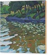 Lyndhurst Lake Wood Print