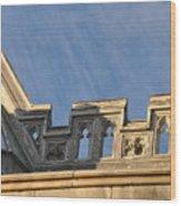 Lyndhurst Mansion Ridge Wood Print