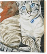 Lynx Point Siamese Cat Painting Wood Print