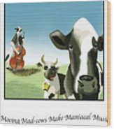 Mooing Mad Cows Wood Print