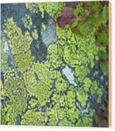 M O S A I C  14055 Wood Print