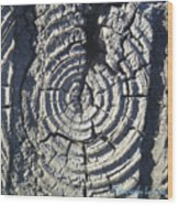 M Scored Into A Log Wood Print