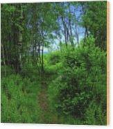 Ma At Aspen Wood Print