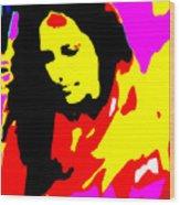 Ma Jaya Sati Bhagavati 5 Wood Print by Eikoni Images