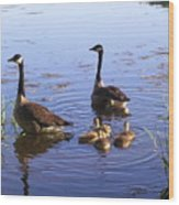 Ma N Pa Geese And All The Little Ones Wood Print