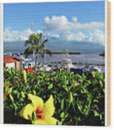 Maalaea Boat Harbor Wood Print