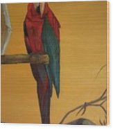 Macaw Of The Canary Island Wood Print