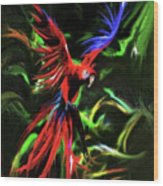 Macaw Parrot  Wood Print