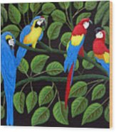 Macaws Wood Print
