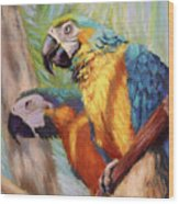 Macaws In The Sunshine Wood Print