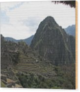 Macchu Picchu 8 Wood Print