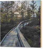 Macgregor Point Boardwalk Wood Print