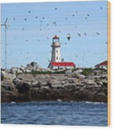 Machias Seal Island Lighthouse Wood Print