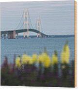 Mackinac Bridge 2 Wood Print