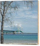 Mackinac Bridge Park Wood Print