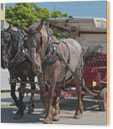 Mackinac Island Horse Carriage Wood Print