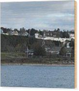 Mackinac Island Panorama Wood Print
