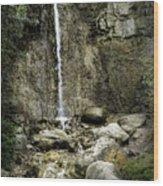 Mackinaw City Park Waterfalls Wood Print