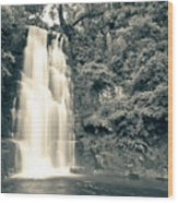 Maclean Falls New Zealand Wood Print