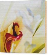 Macro Peonie Wood Print