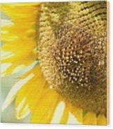 Macro Photography Of Sunflower Wood Print