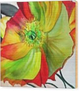 Macro Poppy Wood Print