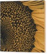 Macro Sunflower Wood Print