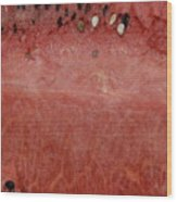 Macro Watermelon  Wood Print