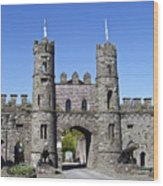 Macroom Castle Ireland Wood Print