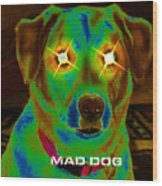 Mad Dog Wood Print