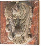 Mad Door Knocker Wood Print
