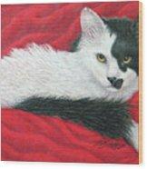 Maddie In Red Wood Print