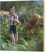 Made In China Soccer Player Wood Print