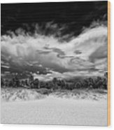 Madeira Beach  Wood Print