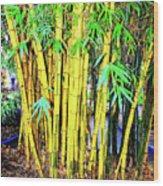 City Park Bamboo Grass Wood Print