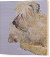 Madigan Wheaten Terrier Wood Print