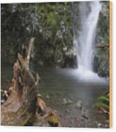 Madison Falls 3 Wood Print