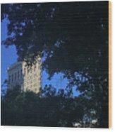 Madison Square Park Wood Print